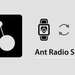 What is an ANT Radio Service?